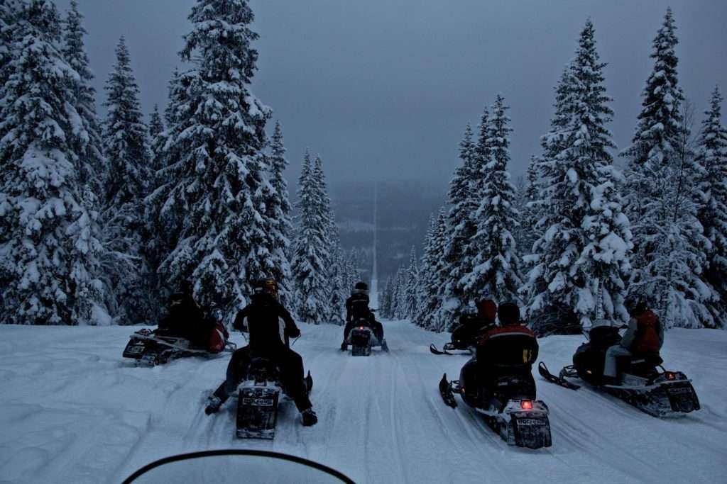 Una de las fronteras más fascinantes es el cortafuegos entre Suecia y Noruega